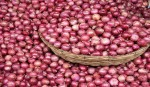 Indian govt okays bids for 1k tonnes onion import