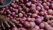 Thieves decamp with 4,000 kg onion in Jaipur