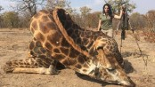 American hunter sparks outrage by posting selfie with dead giraffe